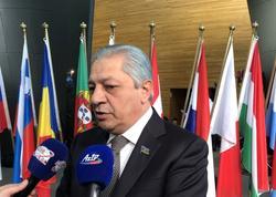 """""""Avropa Parlamentinin yeni qətnaməsi Azərbaycanın maraqlarına cavab verir"""" - FOTO"""