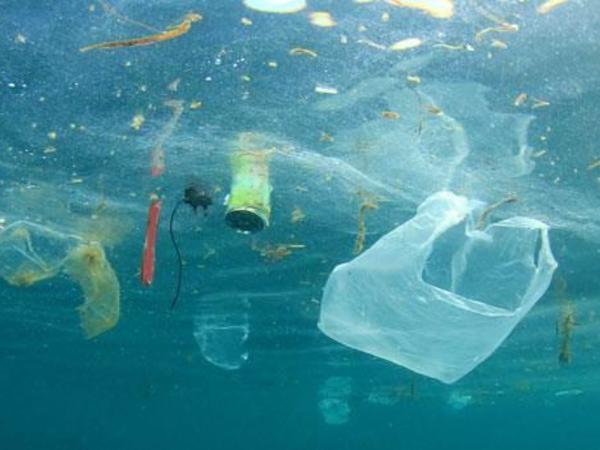 """2050-ci ildə okeanda plastik tullantıların miqdarı balıq sayından daha çox olacaq - <span class=""""color_red"""">PROQNOZ</span>"""