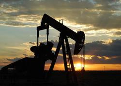Birləşmiş Ştatların neft ehtiyatları artıb