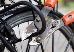 25 yaşlı azərbaycanlı Almaniyada onlarla velosiped oğurladı