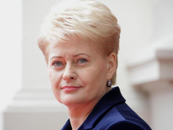 """Litva Prezidenti: """"Azərbaycan Avropanın mühüm tərəfdaşıdır"""" - FOTO"""