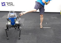 Yıxılanda dura bilən robot-it hazırlandı - VİDEO - FOTO