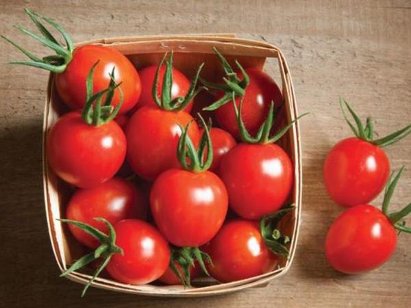 """Bir həftə hər gün pomidor yesəniz, <span class=""""color_red"""">MÖCÜZƏNİN ŞAHİDİ OLACAQSINIZ - FOTO</span>"""