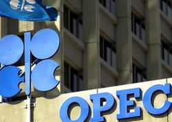 OPEC+ ölkələri növbəti görüşün VAXTINI açıqladı