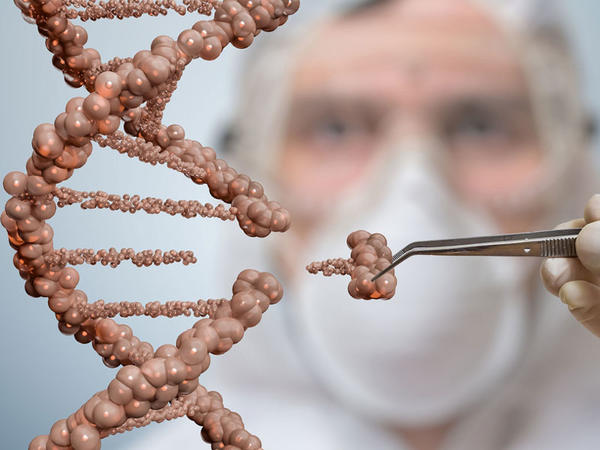 CRISPR kök hüceyrələri görünməz etdi