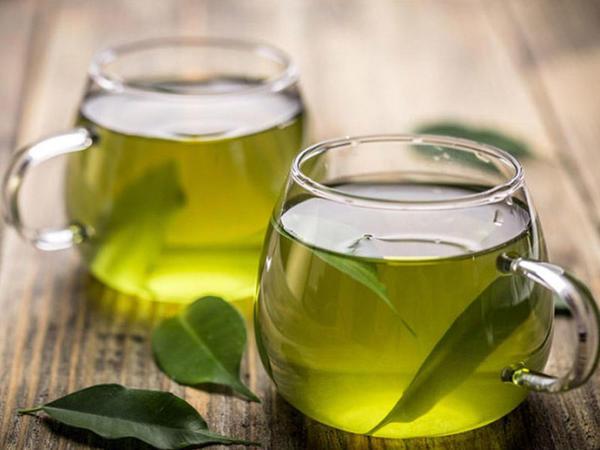 Yaşıl çay mikrob əleyhinə güclü təsirə malikdir