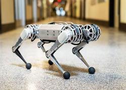 """Robot gepard"" geriyə salto edir - <span class=""color_red"">VİDEO</span>"