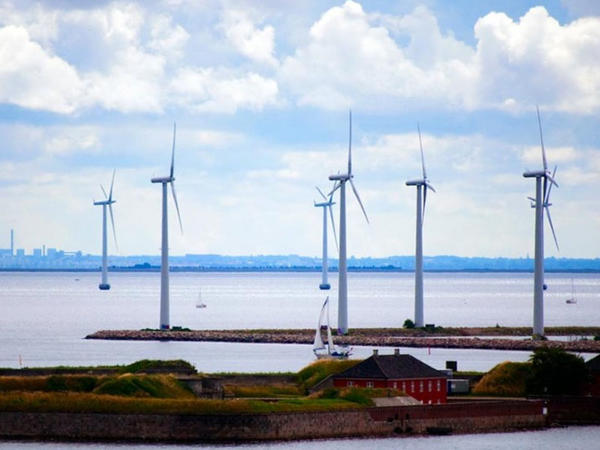 Külək turbinlərinin səs-küyü sağlamlığa ziyan vurur