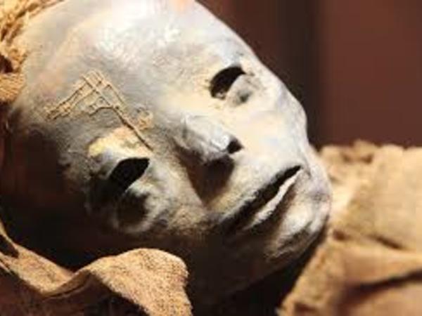 Misirdə tapılan yadplanetli mumiyası dünya elmini silkələdi - FOTO
