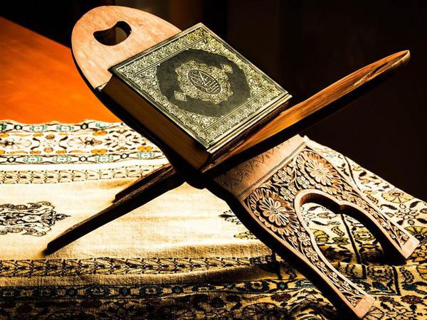 Quran məntiqində həyanın 3 növü