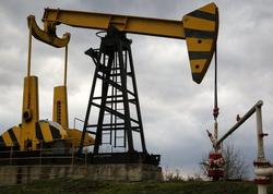 Tramp OPEC-i neft hasilatını artırmağa çağırdı