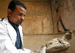 Misirdə 50-dən çox siçan, pişik və şahin quşu mumiyaları aşkar olunub