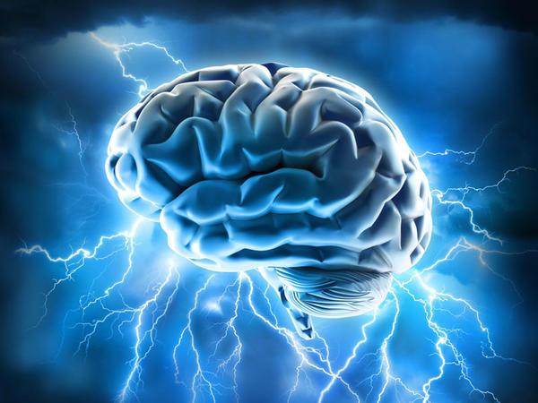 Alimlər ilk dəfə ölmüş beyin hücüyrələrini aktivləşdirməyə nail oldular