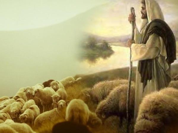 Allah Təala Öz peyğəmbərlərinə çobanlığı tapşırardı