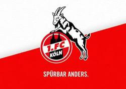 """""""Köln"""" yenidən Bundesliqada"""