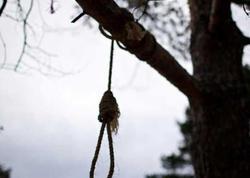 Gəncədə 24 yaşlı gənc çinar ağacından özünü asıb