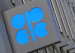 OPEC-ə üzv ölkələrdən neft istehsalını ən çox Liviya və Nigeriya artırıb