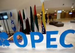 """""""OPEC plus"""" ölkələri apreldə neft hasilatının azaldılmasına dair razılaşma 168% yerinə yetirilib"""