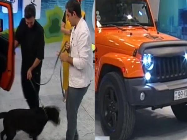 Çingiz AzTV-nin studiyasına avtomobili və iti ilə girdi - VİDEO