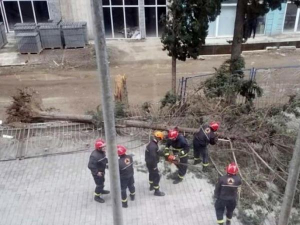 Güclü külək Tbilisidə ciddi fəsadlar törədib - FOTO