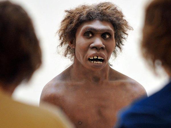 Neandertal genlərini oğurladıq