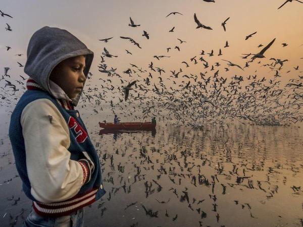 National Geographic 2019 fotomüsabiqəsi: şəhərlər, insanlar və təbiət