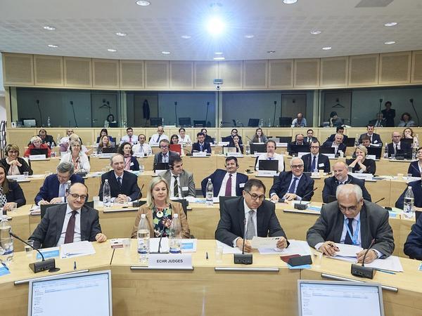 Avropa İnsan Hüqüqları Məhkəməsinin xüsusi iclası keçirildi - FOTO