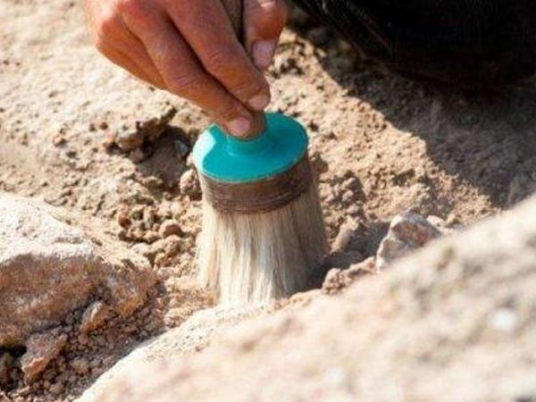 Çində dinozavr izləri tapılıb