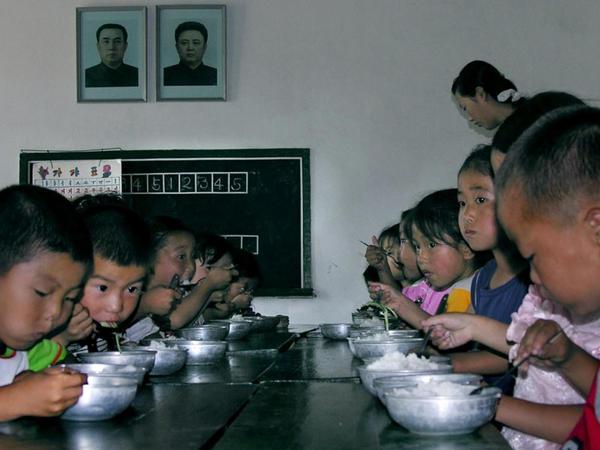Cənubi Koreya KXDR-ə 50 min ton düyü göndərəcək