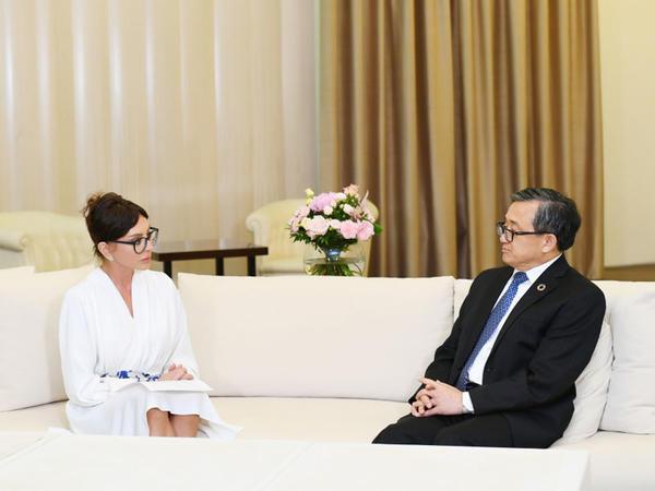 Azərbaycanın Birinci vitse-prezidenti Mehriban Əliyeva BMT Baş katibinin müavini Liu Cenmin ilə görüşüb - FOTO