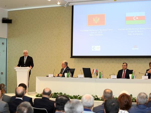 """Azərbaycan iqtisadiyyatına 260 milyard dollardan artıq investisiya yatırılıb - <span class=""""color_red""""> Nazir</span>"""