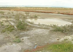 Bələdiyyələrin qanunsuz ayırdığı 2800 hektar torpaq sahəsi geri qaytarılıb