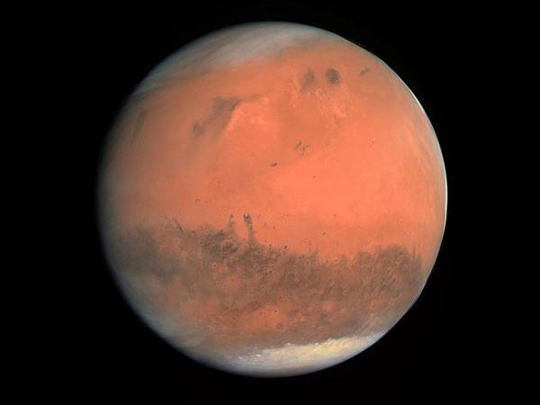 Marsa gedən kosmonavtlara 3D printerlə toxuma və sümük yaradıldı