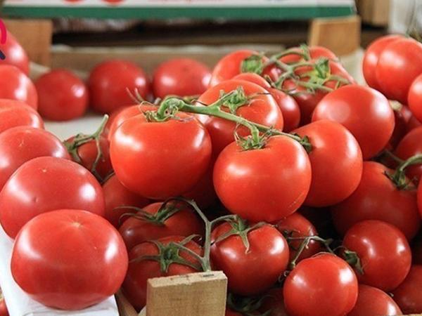 Əvvəllər pomidoru yemirdilər