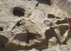 Şamaxıda peyğəmbərin yaxın silahdaşının məzarı aşkarlandı