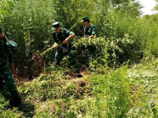 İrandan Azərbaycana narkotik vasitələrin keçirilməsinin qarşısı alındı - FOTO