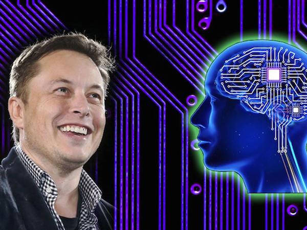 Gələcək beyin implantı nümayiş edilib - VİDEO