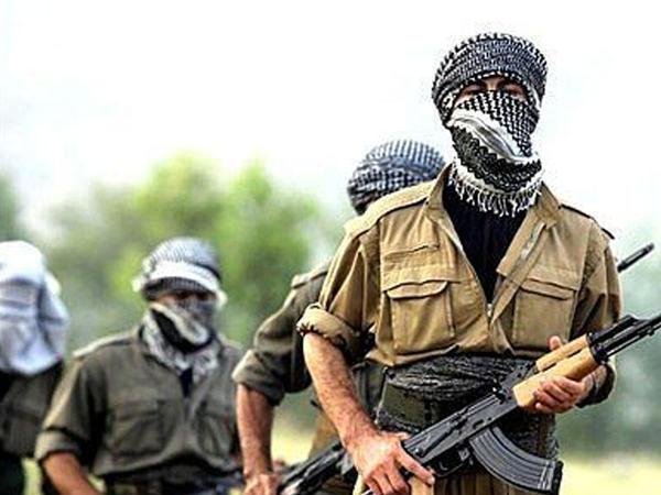"""PKK-dan amansız plan: Türkiyəyə """"ayı hücumu"""""""