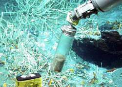 Nefti karbon qazına və metana parçalayan mikroorqanizm aşkarlanıb