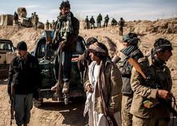"""""""Taliban""""ın 15 silahlısı məhv edildi"""