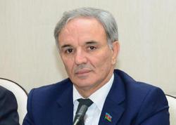 """Əflatun Amaşov: """"Media dövlət siyasətini dəstəkləyir"""""""