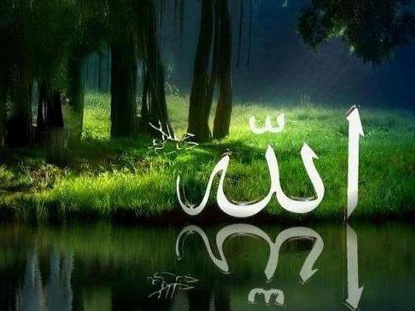 Adəm Peyğəmbərin yaradıldığı cənnət qiyamətdə möminlərin gedəcəyi cənnət idimi?