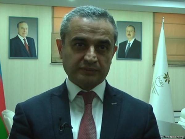 """Faiq Abbasov: """"Kiçik və orta biznes sektorunda müsbət dəyişikliklər müşahidə edilməkdədir"""" - VİDEO"""