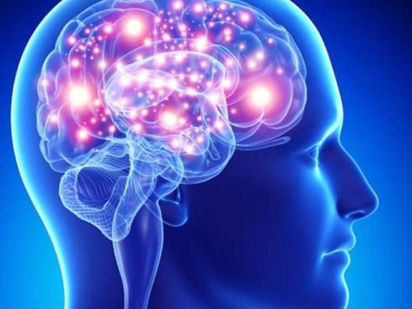 """Beyin qan dövranını necə yaxşılaşdıraq? - <span class=""""color_red"""">5 üsul</span>"""