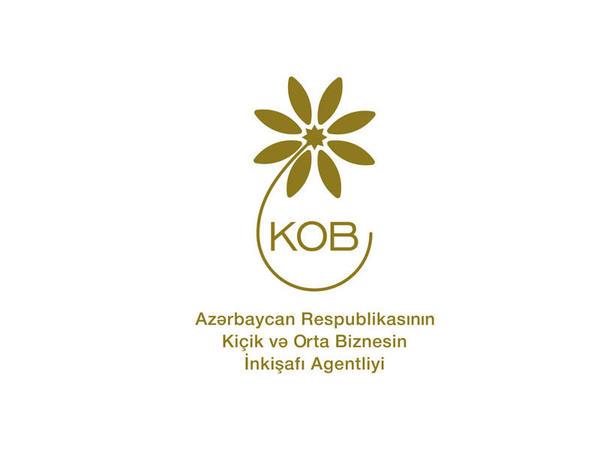 Yaxın dövr ərzində KOB-lar yeni investisiya təşviq mexanizmlərdən geniş istifadə edəcək - FOTO