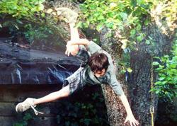Gənc oğlan ağacdan yıxıldı, vəziyyəti ağırdır