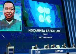 OPEC 2040-cı ilədək qlobal neft hasilatının 10 faiz artacağını proqnozlaşdırır