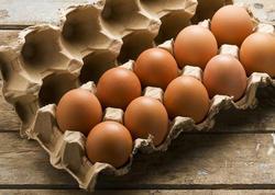 Azərbaycan Əfqanıstana yumurta ixracını artıracaq