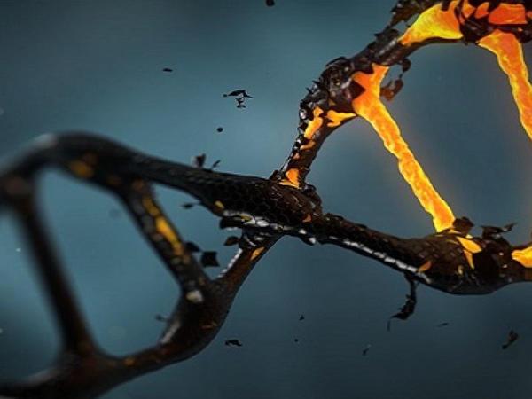 Genetik xəstəliklərin müalicəsində yenilik