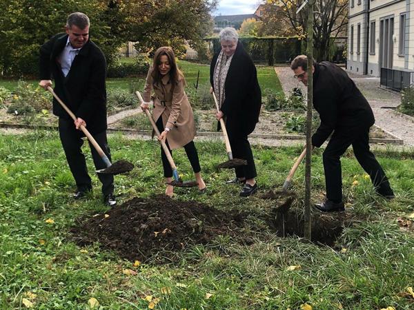 İsveçrənin Turqau kantonunun ən böyük Botanika bağında Azərbaycana həsr olunan ağac üçün yer ayrıldı - FOTO